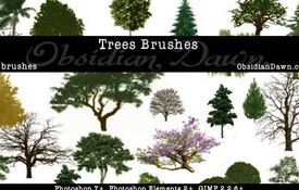 nature photoshop brushes