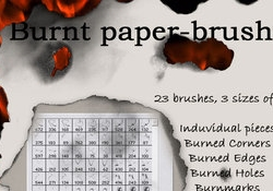 Burnt Paper Brushes