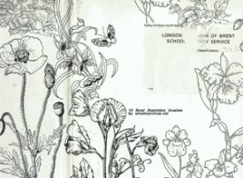 Vintage Floral Illustration
