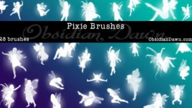 pixie brushes