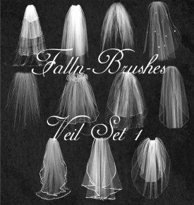 veil brushes
