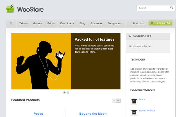 WooStore eCommerce freebie WordPress download theme