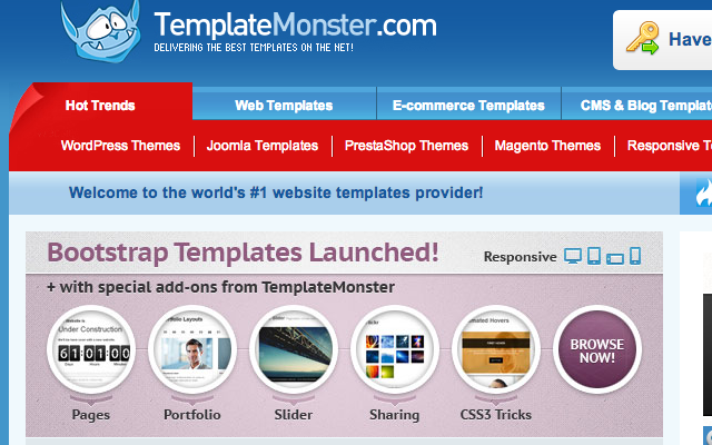 online website templates ecommerce templatemonster