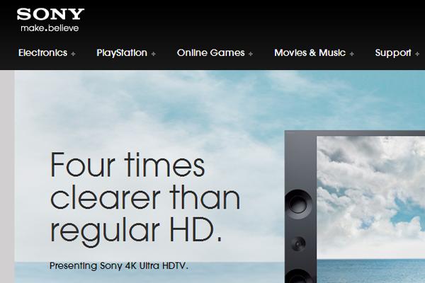 sony electronics company computer homepage