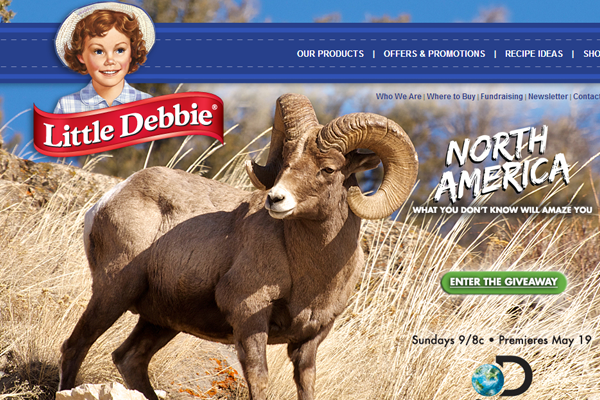 desserts snacks little debbie homepage branding