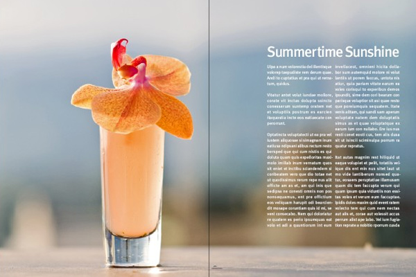 professional magazine layout indesign tutorial