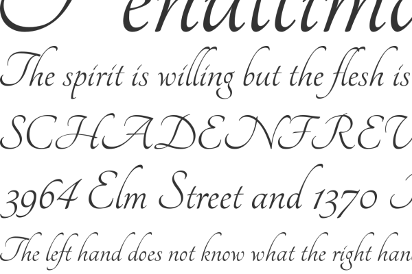 45 Free Calligraphy Fonts For Web on illinois in cool letters