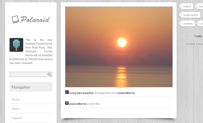polaroid tumblr theme premium purchase design