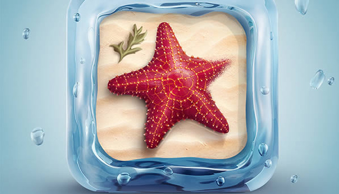 3d textured starfish water icon