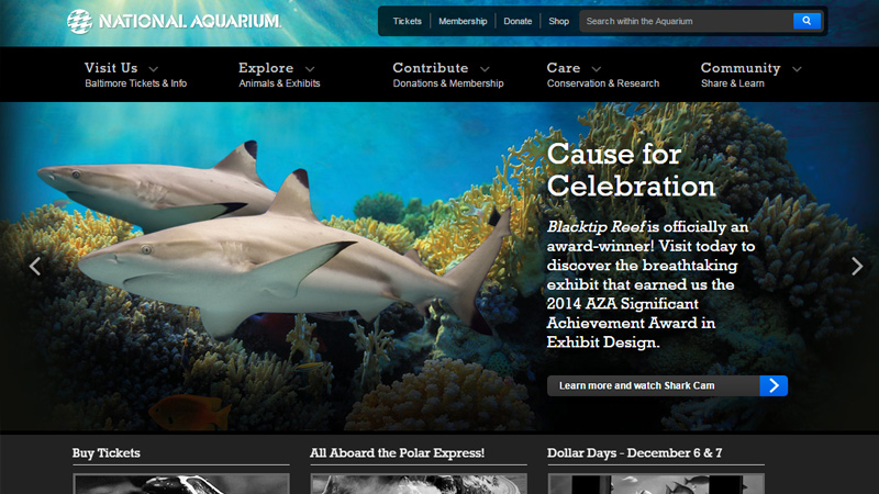 national aquarium baltimore maryland website