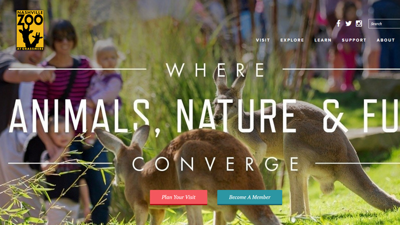 nashville tennessee zoo website layout