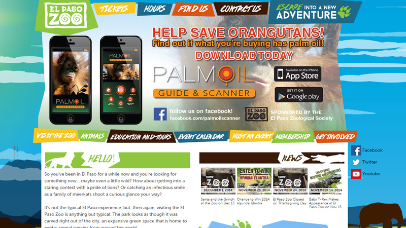 el paso california zoo website design