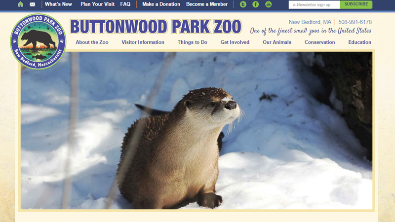 buttonwood park zoo website layout