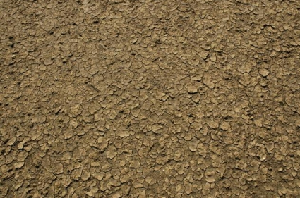 dirt and ground textures
