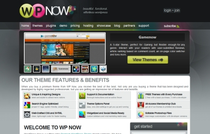 WPNow