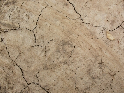 40+ Free Dirt and Ground Textures