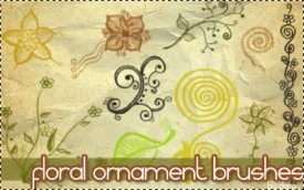Floral Ormament Brushes