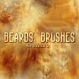 beards brushes