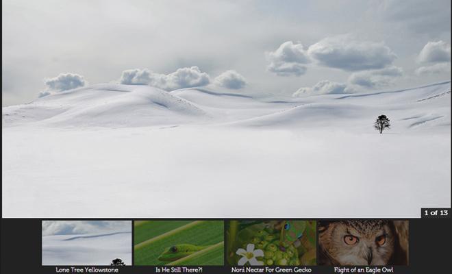 jquery galleryview plugin website homepage freebie