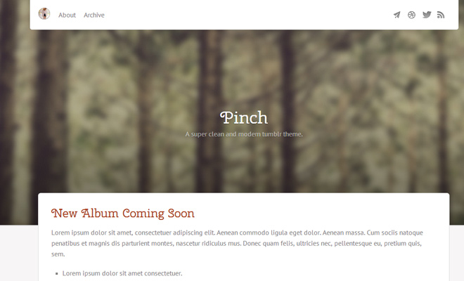 mobile pinch tumblr theme premium simple