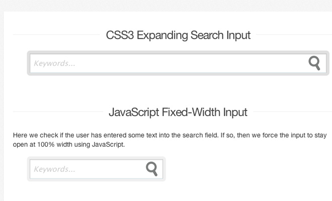 how to code expanding search field html5 css3
