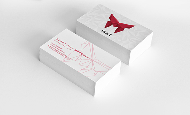molt corporate identity print business cards