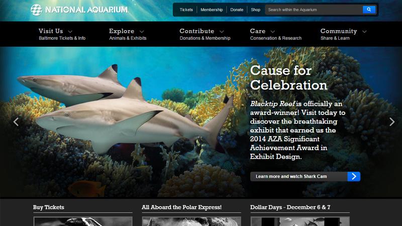 national aquarium baltimore maryland website