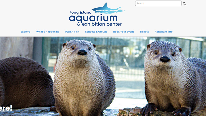 long island new york aquarium website