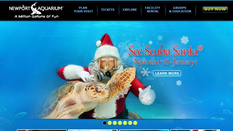 blue newport aquarium dark layout