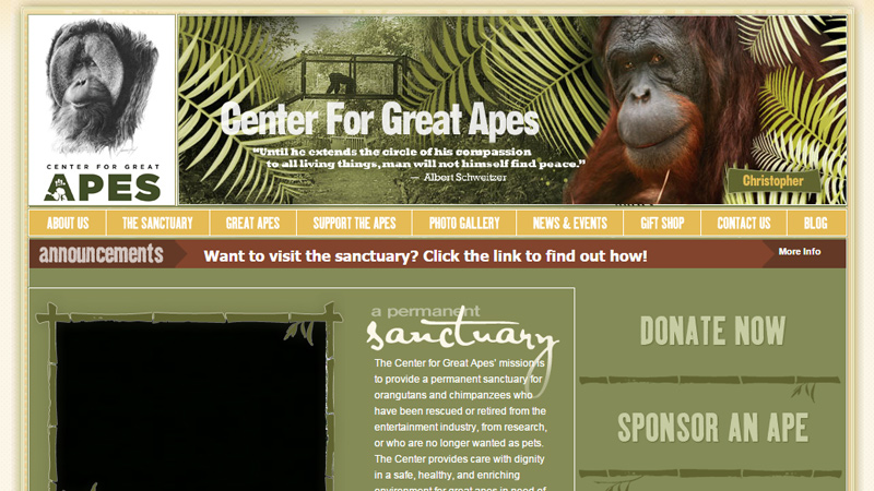 green website center for great apes layout