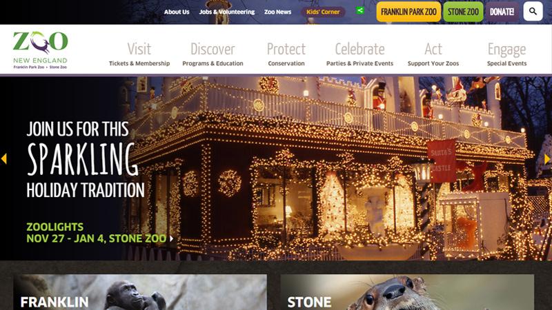 zoo new england website layout dark simple
